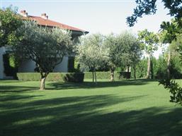gemeinsame Räume, Garten
